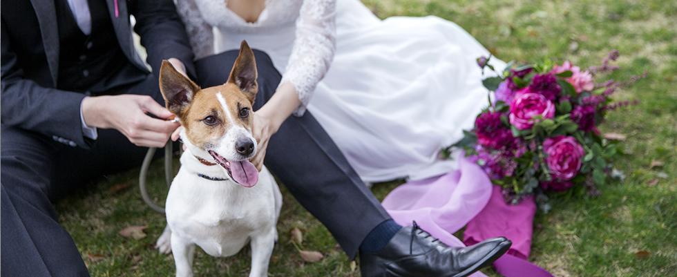 わたしの大切な家族!ペットと一緒に『愛犬♥ウェディング』