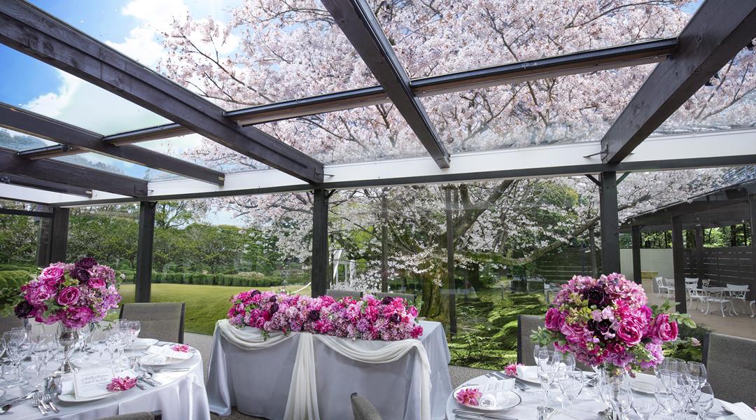 春は桜と幸せが満開で素敵